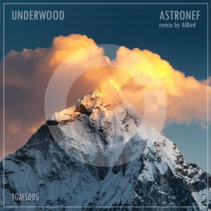 Underwood – Astronef (incl. AlBird Remix)