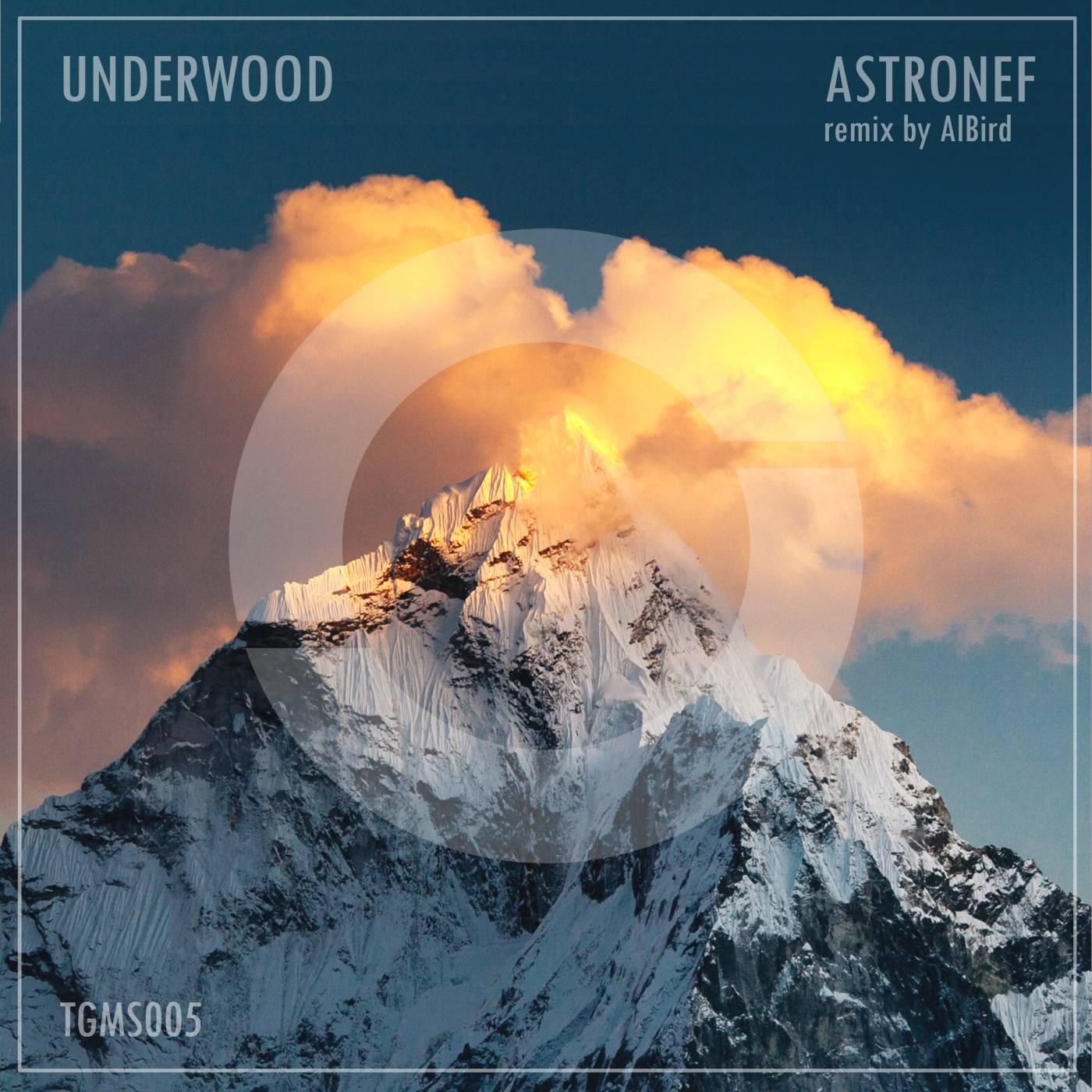Underwood - Astronef (incl. Integral Bread Remix)